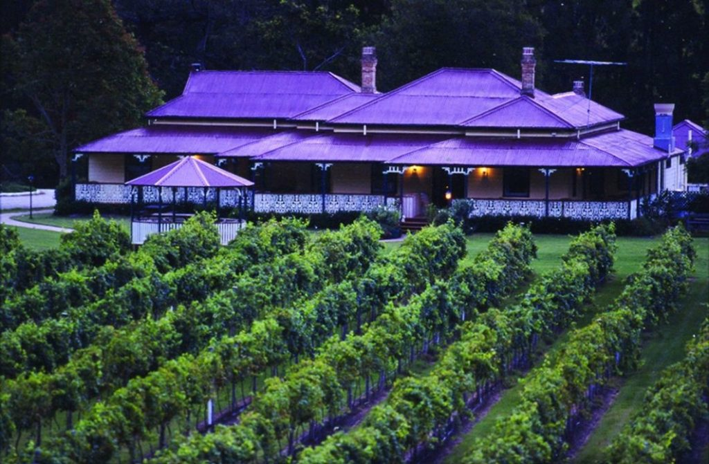 O'Reilly's Vineyard